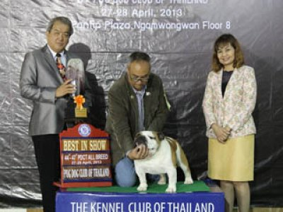 PANTIP PET EXPO & NATIONAL DOG SHOW 2013(AB3)