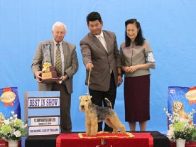 Champion Of Champions Dog Show 2015_AB1