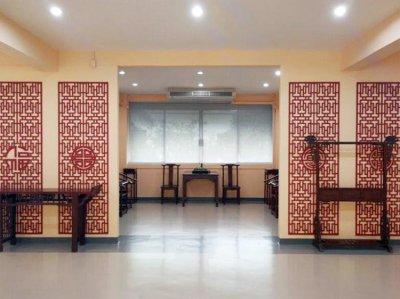 Confucius Institute, DPU