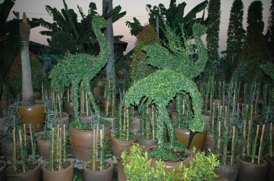Export Topiary