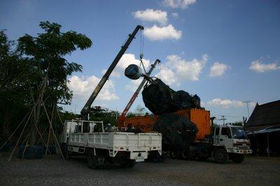 Export Big Tree