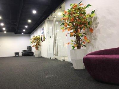 Office Agoda