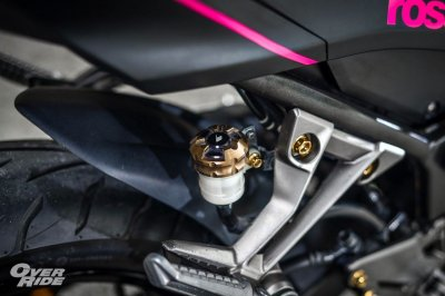 Kawasaki Ninja 300 Black & Pink