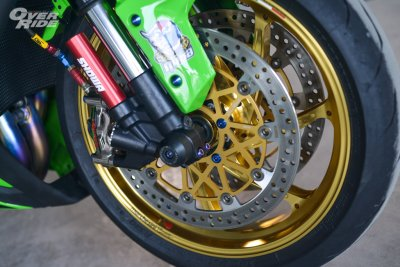 KAWASAKI NINJA ZX10R 2016 GRASSHOPPER   KILLER By Pro-Bolt
