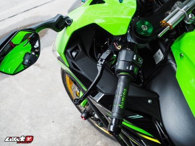 ZX10R GREEN COLOR