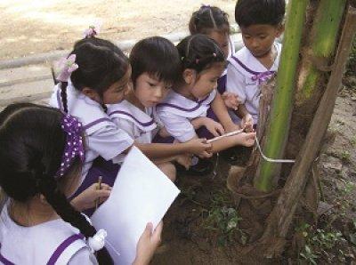 สวนพฤกษศาสตร์โรงเรียน