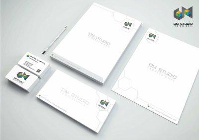 """""""DM Studio Professional"""" CI Design"""
