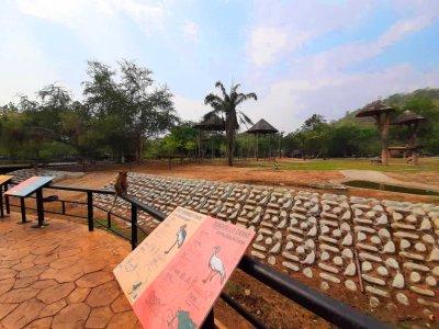 สวนสัตว์ เปิดเขาเขียว (โซนแอฟริกา)