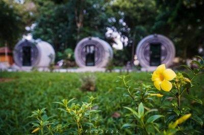 วัดทุ่งลาดหญ้า ตำบลลาดหญ้า อำเภอเมืองกาญจนบุรี จังหวัดกาญจนบุรี