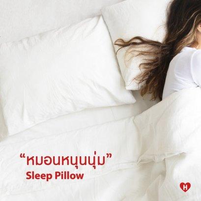 Sleep Pillow - Standard Series