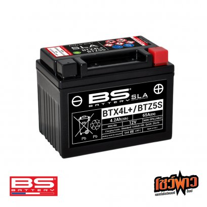 BS BATTERY BTZ5S (FA)