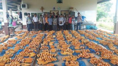 โครงการปรับปรุงพันธุ์ข้าวโพดมหาวิทยาลัยพะเยา (University of Phayao Maize Improvement, UPMI) ได้จัดกิจกรรม Open Field Day ณ แปลงทดสอบพันธุ์ คณะเกษตรศาสตร์และทรัพยากรธรรมชาติ มหาวิทยาลัยพะเยา