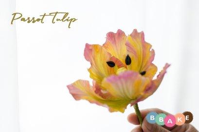 Parrot Tulip Gumpaste