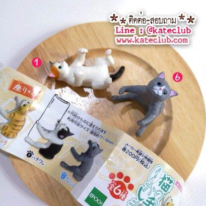 (เหลือ No.6) กาชาปอง -  น้องแมว