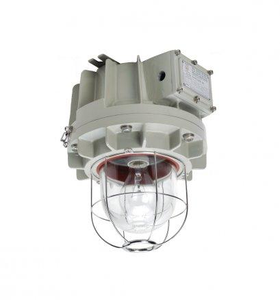 Incandescent and Compact Fluorescent Lighting Fixture, DLF Series