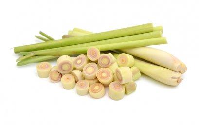 Lemongrass / ตะไคร้