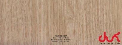 AS3-B29-BP