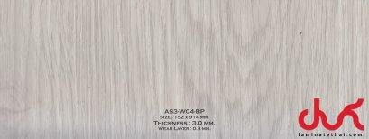 AS3-W04-BP