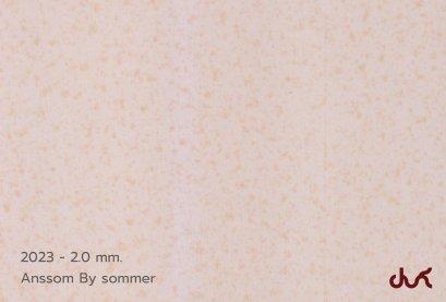 2023 ANSSOM 2.0 mm.