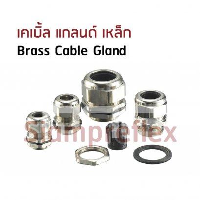Brass Cable Gland (เคเบิ้ล แกลนด์ เหล็ก)