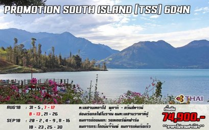 PROMOTION SOUTH TSS 6D4N BY TG  AUG - NOV