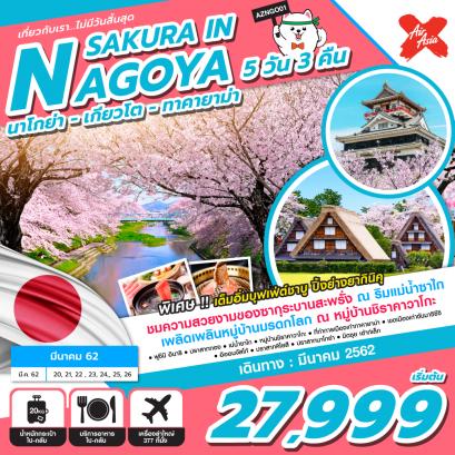 ทัวร์ญี่ปุ่น : นาโกย่า เกียวโต ปราสาททอง ซากุระ