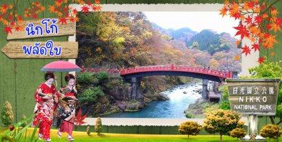 เที่ยวญี่ปุ่นในวันใบไม้เปลี่ยนสี