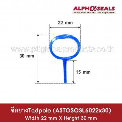 ซีลยางซิลิโคน Tadpole Section ASTOSQSL6022x30