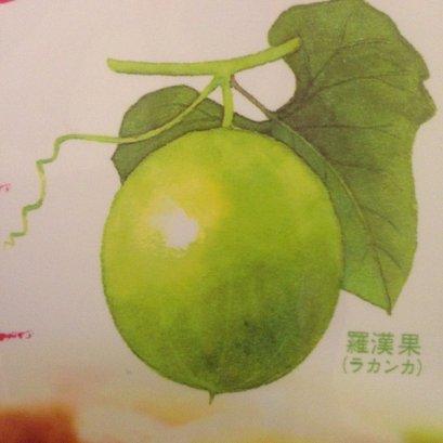 อาหารสุขภาพ ธรรมชาติ น้ำตาลจากผลหล่อฮังก๊วย 600 g