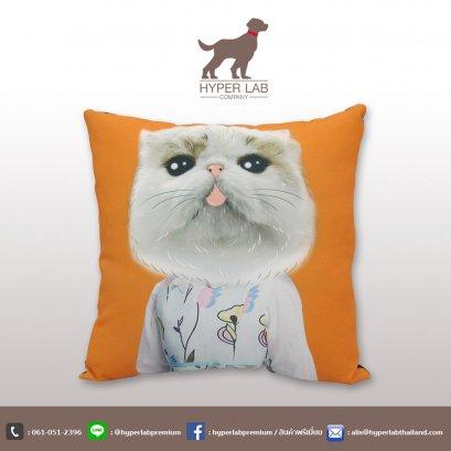 หมอนอิงรูปแมวเปอร์เซีย พื้นหลังหมอนสีส้ม