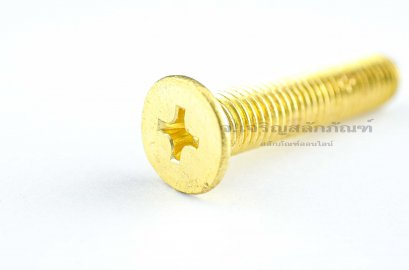น็อตทองเหลืองหัวเตเปอร์แฉก M10x50
