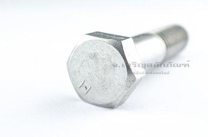 น็อตหัวเหลี่ยมสแตนเลส Stainless Steel Hex Bolt M20x90