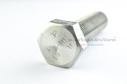 น็อตหัวเหลี่ยมสแตนเลส Stainless Steel Hex Bolt M24x100 เกลียวตลอด