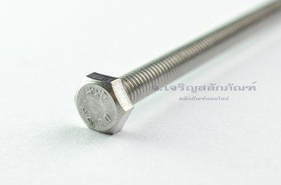 น็อตหัวเหลี่ยมสแตนเลส Stainless Steel Hex Bolt M6x110 (น็อตเบอร์ 10)