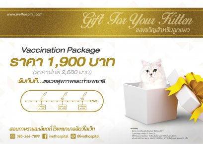 vaccination package for cat