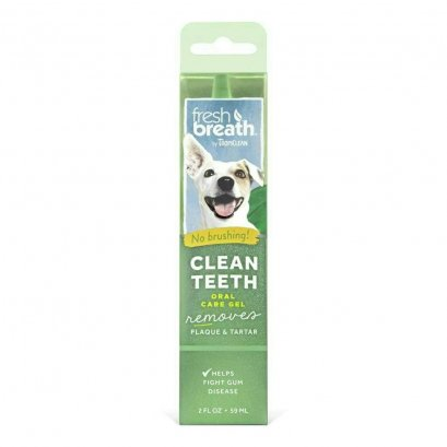 Fresh Breath Mint Foam 4.5 Oz.