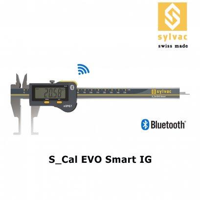Caliper S_Cal EVO Smart IG
