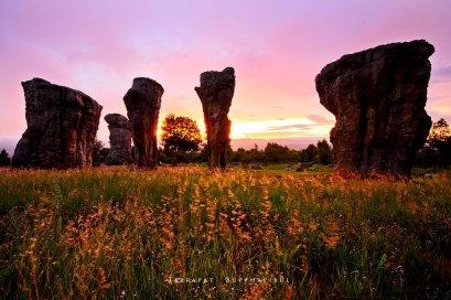 ทุ่งดอกกระเจียว ป่าหินงาม ไทรทอง ชัยภูมิ   ทัวร์ทุ่งดอกกระเจียว ทัวร์ป่าหินงาม ทัวร์ชัยภูมิ