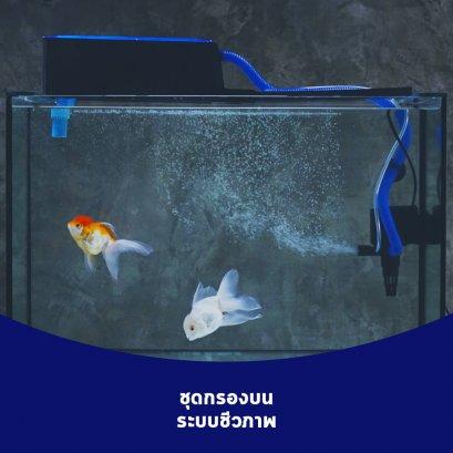 ชุดกรองบนระบบกรองชีวภาพ สำหรับตู้ปลา