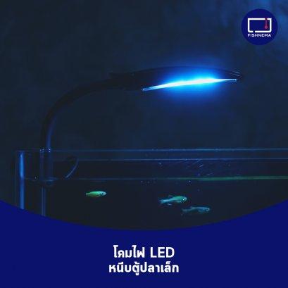 โคมไฟหนีบตู้ปลา LED