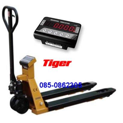 TIGER THP-01