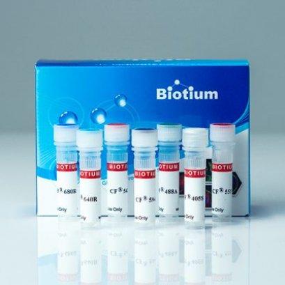 Alpha-bungarotoxin, CF®405s