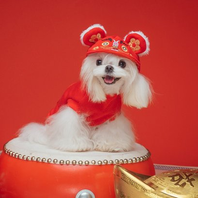 ISPET_dog_cat_clothes_chinese_newyear_set3_01