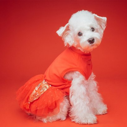 ISPET_dog_cat_clothes_chinese_newyear_set4_01
