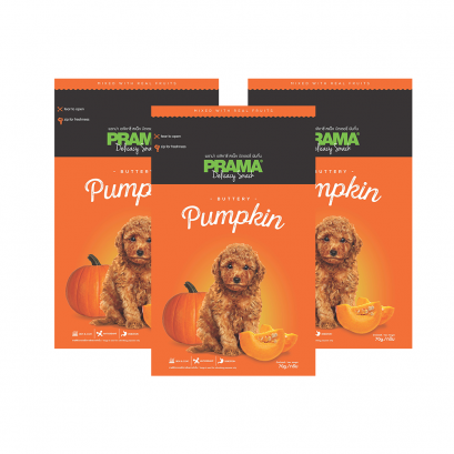 Prama Dog Snack Pumpkin
