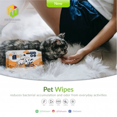 Organic Anti-Bacterial Pet Wipes