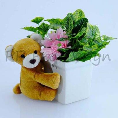 D31 ตุ๊กตาหมี