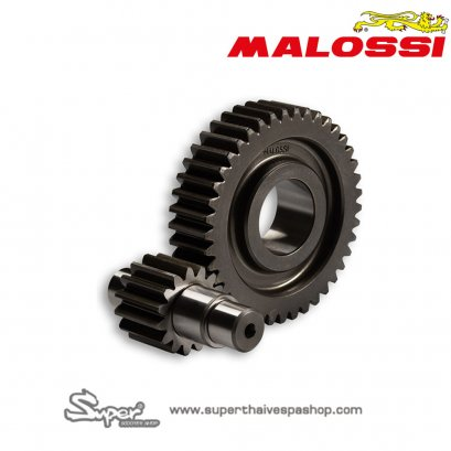 THE MALOSSI GEARBOX 15/41 TEETH
