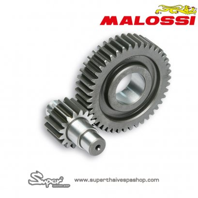 MALOSSI GEARBOX HTQ Z 15/41 WITH GEARED COUPLING