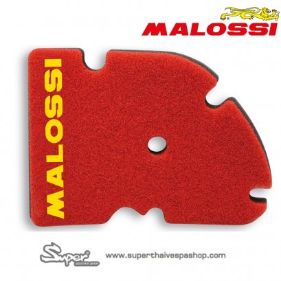 THE MALOSSI AIR FILTER GTS 300